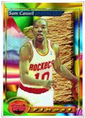 Regs & Parallels Houston Rockets 1993-1994