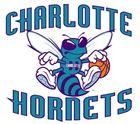 Hornets (Son's PC)