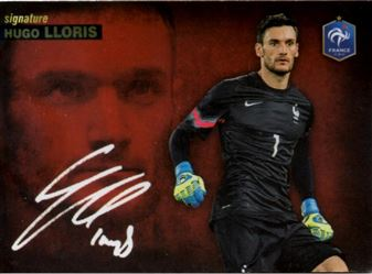 2015 Panini #Tousensemble Road to France 2016 #172 Hugo Lloris